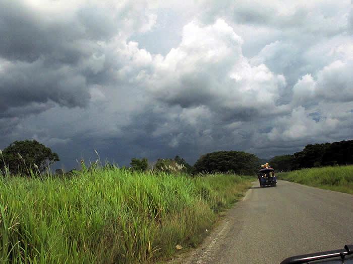 roadback_9898